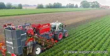 Zeitplan für EU-Agrar-Reform nimmt Konturen an - WESER-KURIER