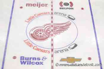 View: Detroit Red Wings injuries list - WDIV ClickOnDetroit