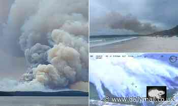 Huge fire breaks out at Booderee National Park in Jervis Bay, NSW as beaches are evacuated