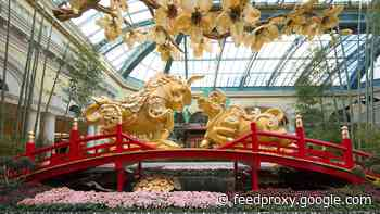 Bellagio celebrates the Year of the Ox with 'A Season of Love'