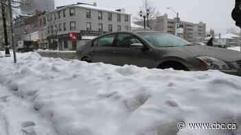 15 cm of snow possible on Hamilton Mountain: weather advisory
