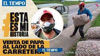 Campesinos venden papa en carretera de Ventaquemada, Boyacá - El Tiempo