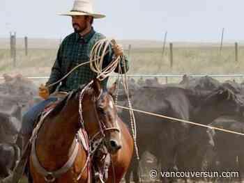 Tyner family makes plea in cold case of missing Merritt cowboy