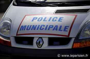 Franconville : la tentative de vol dans une voiture est fatale au petit dealer - Le Parisien