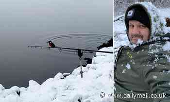 Angler films kingfisher diving into lake to scoop up a fish before perching on his rod to eat it - Daily Mail