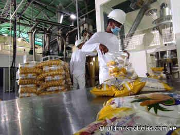 En Charallave producirán 400 toneladas mensuales de harina de maiz - Últimas Noticias