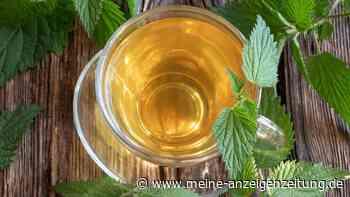 Detox-Tee selbst machen: Das bringen die Tees und so geht es