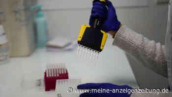 Südafrikanische Corona-Variante könnte zu erhöhten Infektionen führen - Impfstoffe-Erfolge in Gefahr?