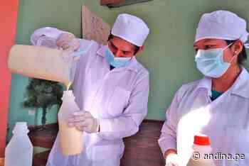 Ganaderos de Végueta mejoran productividad y calidad de leche - Agencia Andina