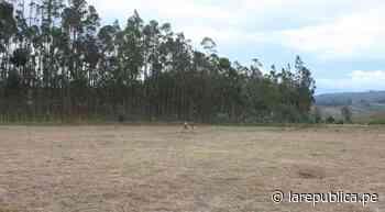 Donan terreno para la construcción de nuevo hospital de Chachapoyas - LaRepública.pe