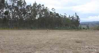 Amazonas: Entregan terreno a EsSalud para un nuevo hospital en Chachapoyas - Diario Trome