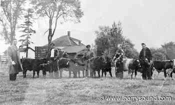 "WhatsOn ""Let's go to the fair!"" Dunchurch Fall Fair marks 130 years Aug. 16-17 - parrysound.com"