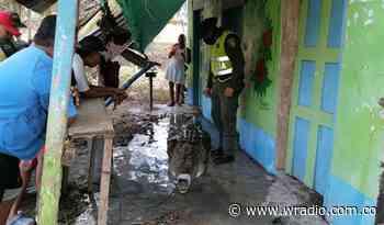 Autoridades rescataron a caimán que atemorizaba a la comunidad de Cimitarra, Santander - W Radio
