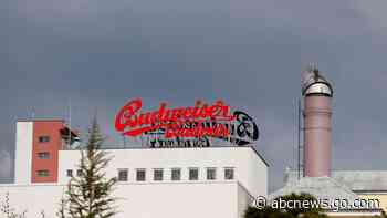 Czech brewer Budvar hits record as people drink more at home