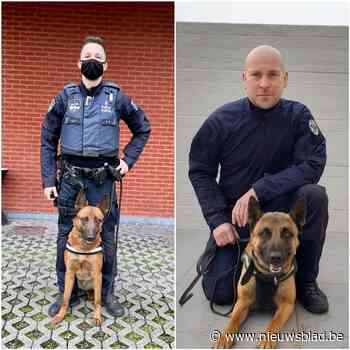 Hondenbrigade breidt opnieuw uit met Bartje en Roef