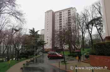 Thorigny-sur-Marne : Maxence Le Gac acquitté par la cour d'assises - Le Parisien