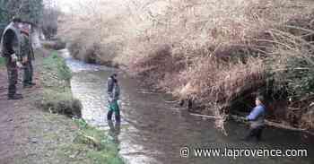 Saint-Chamas : ils vont nettoyer les berges de la Touloubre - La Provence