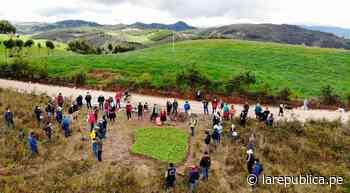 Cajamarca: siembran 40.000 plantones de pino en caseríos de Celendín LRND - LaRepública.pe