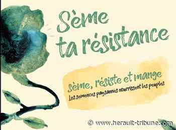 ASSOCIATIONS : MEZE - Sème ta résistance du 4 au 9 novembre 2019 : Hérault Tribune - Hérault-Tribune