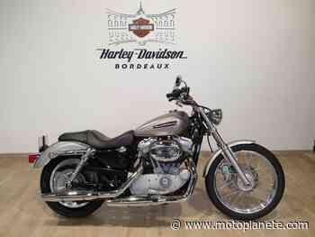 Harley-Davidson XL 883 CUSTOM 2008 à 6900€ sur BEGLES - Occasion - Motoplanete