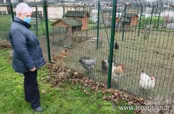 Essonne : Mennecy, ville labellisée «amie des animaux» - Le Parisien