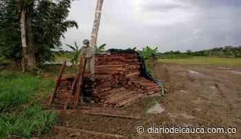 Autoridades incautaron más de mil listones de madera en Puerto Concordia, Meta - Diario del Cauca