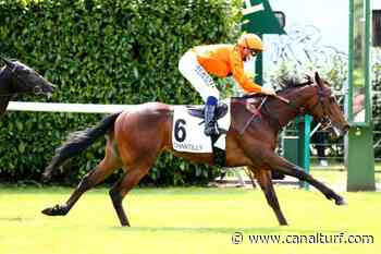 Pronostic de la course PRIX LA FLECHE - 14 juin 2020 Canalturf - Canal Turf