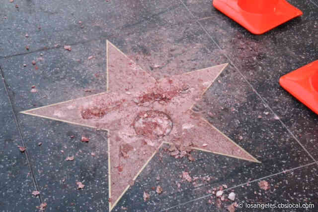Man Pleads Not Guilty To Vandalizing Donald Trump's Star On Hollywood Walk Of Fame