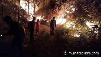 Primer incendio de masa vegetal afecta bosque de Los Valles de Cañazas - Metro Libre