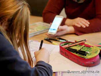 So funktioniert Homeschooling in Wüstenrot und Obersulm - STIMME.de - Heilbronner Stimme