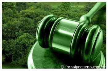 Proprietários de terras são condenados por crimes ambientais em Bom Jardim – Jornal Pequeno - Jornal Pequeno