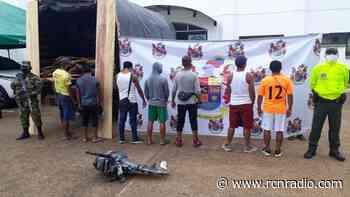 Capturan a siete personas por tala indiscriminada en Mitú (Vaupés) - RCN Radio