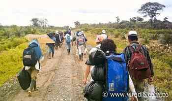 Enfrentamientos en el municipio de Hacarí generó el desplazamiento de varias familias - W Radio