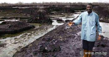 Moet de directeur van Shell straks de gevangenis in voor 'ecocide'? - MO