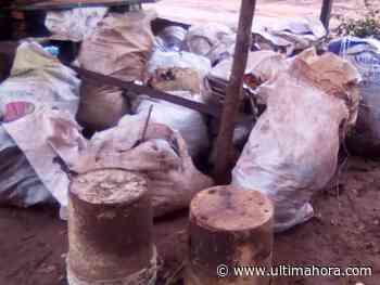 Reclaman falta de recolección de basura en asentamiento de Arroyos y Esteros - ÚltimaHora.com