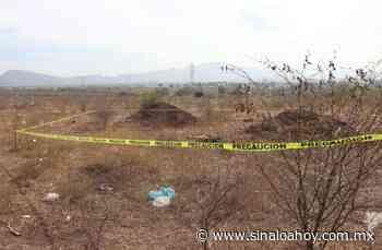 Semidesnudo y torturado localizan un cuerpo en baldío en Guamuchil. - Sinaloahoy