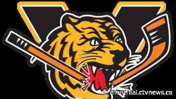 Coronavirus outbreak in Quebec Major Junior hockey team ends activities in Chicoutimi - CTV News Montreal