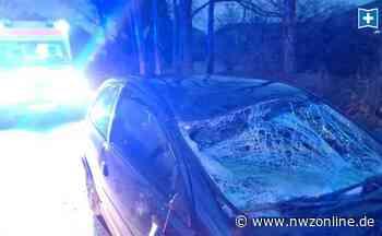 Kollision mit Pkw: Pferd wird nach Unfall in Dinklage eingeschläfert - Nordwest-Zeitung
