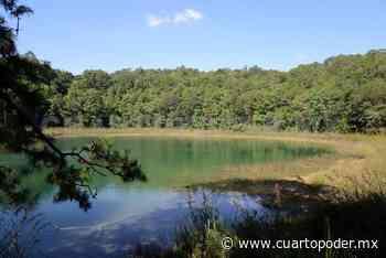 Montebello con 40 % de contaminación en lagos - Cuarto Poder