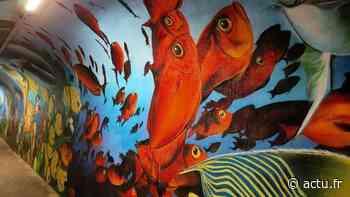 Essonne. À Brunoy, le tunnel du parc offre une plongée multicolore dans les fonds marins - Actu Essonne