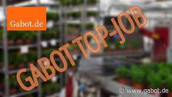 Top Job: Karrierechance bei Gartenbau Rednitzhembach Schmid als Junior Einkäufer (m/w/d) - GABOT