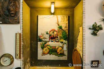 'Verde Vintage', uma exposição para ver na Casa das Conchas Há 1 dia - Time Out