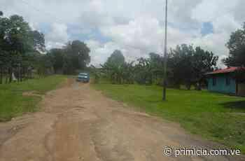 En el asentamiento campesino San Ramón se sienten olvidados - primicia.com.ve