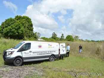 Localizaron dos cadáveres en un sector de San Casimiro - Diario El Siglo