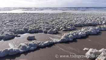 En Punta Mogotes la playa apareció cubierta de espuma marina - Todo Provincial