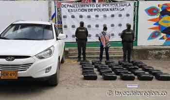 Incautan millonario cargamento de marihuana ilegal en Nátaga - Noticias