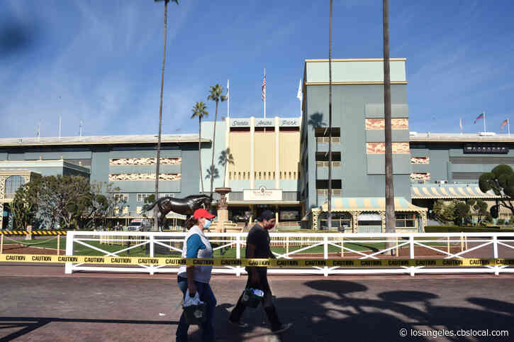4-Year-Old Horse Euthanized At Santa Anita Park After Fracturing Ankle During Workout