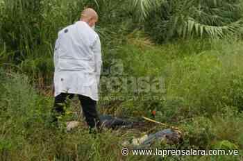 Hallan en Sanare restos de hombre desaparecido desde diciembre - La Prensa de Lara