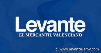 Carrera Solidaria en el Colegio Las Colinas - Levante-EMV