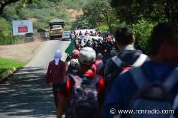 Campesinos desplazados en Hacarí anuncian movilización hacía Ocaña y Cúcuta - RCN Radio